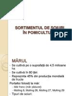 Sortimentul de soiuri in pomicultura