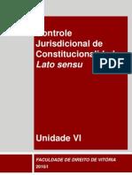 Dir Proc Constit 2010 Unid Vi