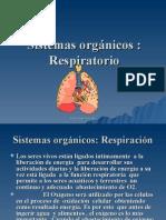 PP Respiratorio 08