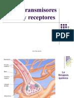 PP Neurotransmisores  12