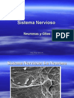 Sistema Nervioso Neurona y Glias 9