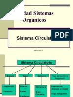 Sistemas Org. Circulatorio 5