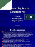 Sistemas Organicos Circulatorio 6
