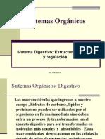 Sistemas Organicos Digestivo 4