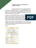 Informe arequipe