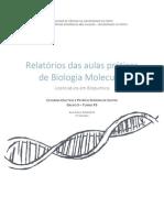 Relatórios de Biologia Molecular G5 T3