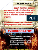 Diskusi Tentang FIRE (ANCAMAN BIODIVERSITY)