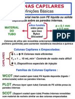 Cromatografia Gasosa - 11
