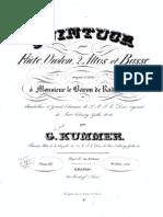 Flute Quintet in D major, Op.66 (Kummer, Kaspar)viola2.pdf