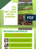 Cultivos Frutales Del Valle de San Lorenzo (2)