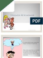 52183556 14 Musculos de La Mimica y Musculos Masticadores Prof Magalis Perez