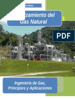 Endulzamiento Del Gas-natural