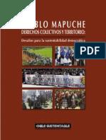 Pueblo mapuche. Derechos colectivos y territorio