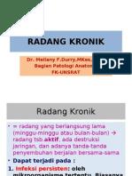 Radang Kronik-modul Demam 2010