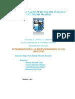 DETERMINACION DE MICROORGANISMOS EN LOS LAPICEROS.docx