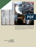 Guia de estudio Planes de emergencia.pdf