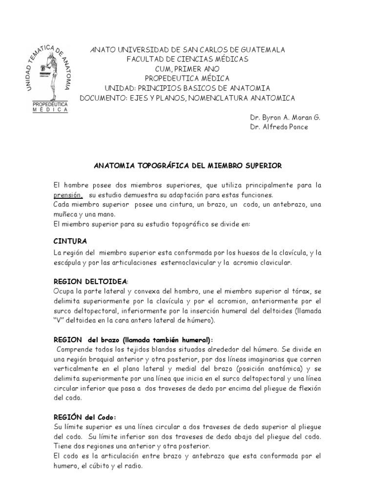 ANATOMIA TOPOGRÁFICA DEL MIEMBRO SUPERIOR E INFERIOR