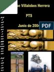 Bombeo Hidraulico PISTON