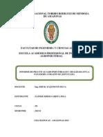 Informe de Practicas Agroindustriales i Presentar