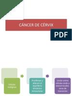 CÁNCER DE CÉRVIX