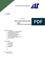 EL FRUTO, Y SUS CLASIFICACIONES.docx