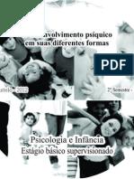 O desenvolvimento psiquico em suas diferentes formas