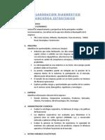 Guia Elaboracion Diagnostico Financiero Estrategico