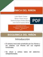 BIOQUÍMICA DEL RIÑÓN