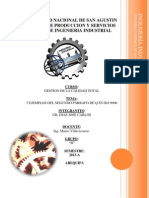 5 EJEMPLOS DEL SEGUNDO PÁRRAFO DE Q ES ISO 9000