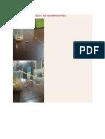 Xa proyecto germinadores.docx