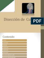 Técnicas  quirúrgicas - Disección de cuello02