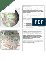 Atlas de Histologia
