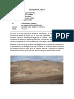ULTIMO INFORME PROYECTO UQUIRA.docx
