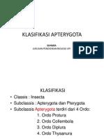 Ch.7_Klasifikasi_Apterygota.pdf