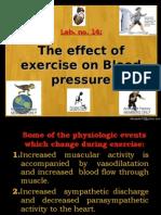 14-Exercise BP