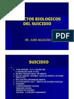 Suicidio, Neurobiologia