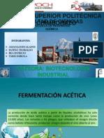 Expo de Fermentacion Acetica