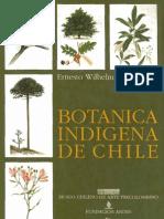 Botanica Indigena