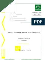 PRUEBAS DE DIAGNÓSTICO DE MATEMÁTICAS 2007-2008