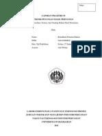 LAPORAN PRAKTIKUM TEKNIK PENANGAN HASIL PERTANIAN (Pembersihan, Sortasi, dan Grading Bahan Hasil Pertanian)