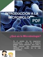 Capacitación de microbiologia 1 - 2013