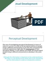 Perceptual Development (Cross Cultural Studies)