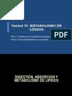 BIOQUÍMICA UNIDAD V METABOLISMO DE LIPIDOS