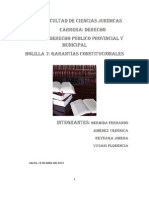 Bolilla VI Garantias Constitucionales