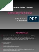 Persentasi PBL KPD