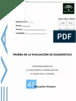 PRUEBAS DE DIAGNOSTICO DE C. DEL MEDIO 2008-2009