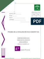 PRUEBAS DE DIAGNOSTICO DE LENGUA II 2007-2008