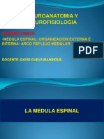 Semana 5-Medula Espinal