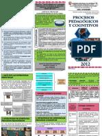 2. TRIPTICO 02 PROCESOS PEDG Y COGN.pdf