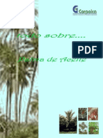 500 Preguntas Sobre Palma de Aceite